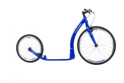 Crussis one Cobra blauw